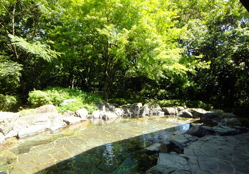 ブログ用(星野村2).JPEG